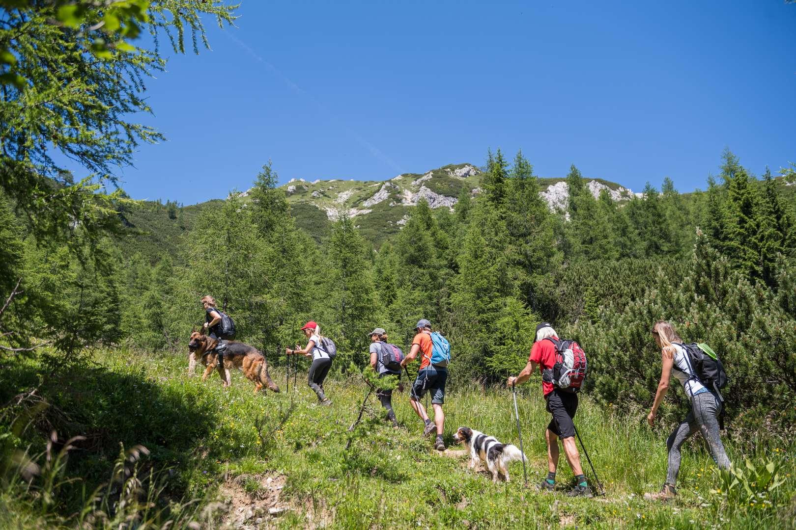 Hikers starting their way to Viševnik